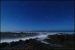 Perpetual Star Storm (Darren White Photography) Tags: ocean nightphotography white darren landscape nikon pacificocean moonlight oregoncoast startrails capeperpetua d300 centraloregoncoast darrenwhite darrenwhitephotography