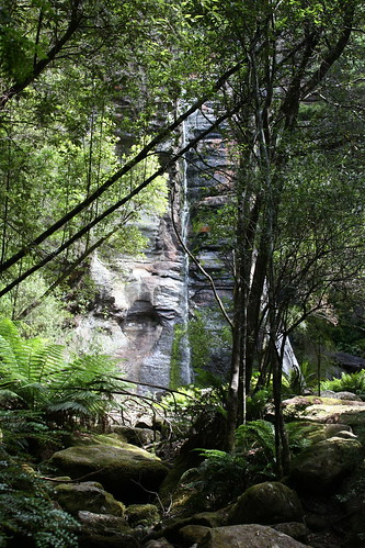 Snug Falls -- January 11, 2009