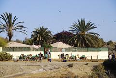 Gran Canaria 2 (Costa Meloneras, Canary Islands, Spain) Photo
