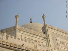 Still from One of the Seven Wonders # 2 (Falling Dreams) Tags: india history tomb taj agra touristspot sevenwonders marbel   historicalmonuments mahel  indianmonuments  tajmahel      fallingdreams    visittaj