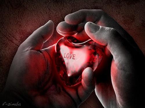 Srce u slikama - Page 3 3194847709_a518dd22cd