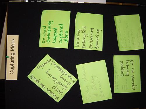 Captruing ideas