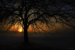 Going to sleep... (StafbulCZ) Tags: light sunset sky sun silhouette fog canon landscape eos colours czech czechrepublic rays tamron jarek gettyimages jicin czechparadise krajina zpadslunce ceskyraj cesko echy jin tamron1750 400d eos400d canoneos400d eskrj goldstaraward jicinsko ostruzno stafbulcz jinsko ostruno jaroslavvondracek