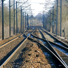 intersection de deux parallles (OliBac) Tags: train railway rails ballast chemindefer railroadswitch aiguillage voieferre olibac citrit olympussp560uz
