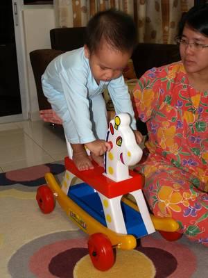 20090202_horsestand