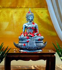 """Buddha (""""Shankar M"""") Tags: flower rose silver d50 thailand nikon buddha buddhism thai budha shankar 70300 poja buddhisminthailand"""