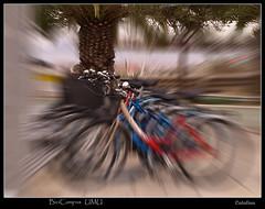 BiciCampus UMU