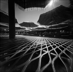 Chopstix (alternatePhotography) Tags: bw sun film lunch grid holga fuji florida gainesville saturday pinhole diafine 100 chopstix acros pinholga