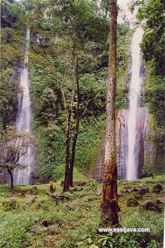 Tancak Kembar Waterfall - Bondowoso - East Java