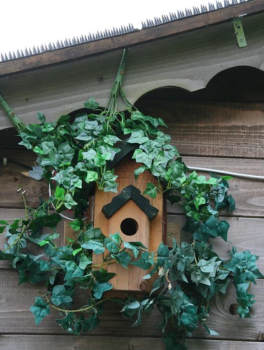 Nest Box Protection