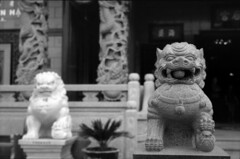 Temple Guards (airencracken) Tags: film 50mm chinatown rangefinder 135 february 2009 emulsion 100iso arista leicam3 summicron50mmf2 airencracken laphotocontest09 legacypro aristalegacypro100