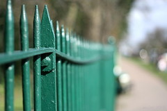 green fence ... (_nejire_) Tags: uk light england green london canon fence eos kiss bokeh britain canonef50mmf18 railing fp frontpage 10am greaterlondon 30faves supershot 40faves sooc 25faves nejire 400d eos400d canoneos400d kissx fave30 mhashi fave25 fave40 591733545pm 12528485g0am