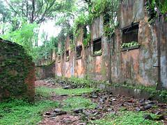 ile st joseph bagne (nicholaslaughlin) Tags: france southamerica prison guyane frenchguiana reclusion bagne ilesdusalut ilestjoseph