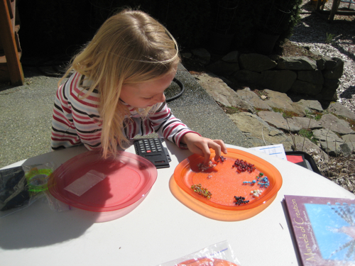 Zippy Counting & Sorting Beeds