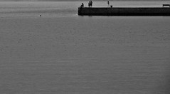 the_warf (OZROSIS) Tags: sea bw panorama seascape landscape blackwhite atmosphere biancoenero sigma1770 nikond40 ashowoff