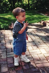 Noah  - toddler pic