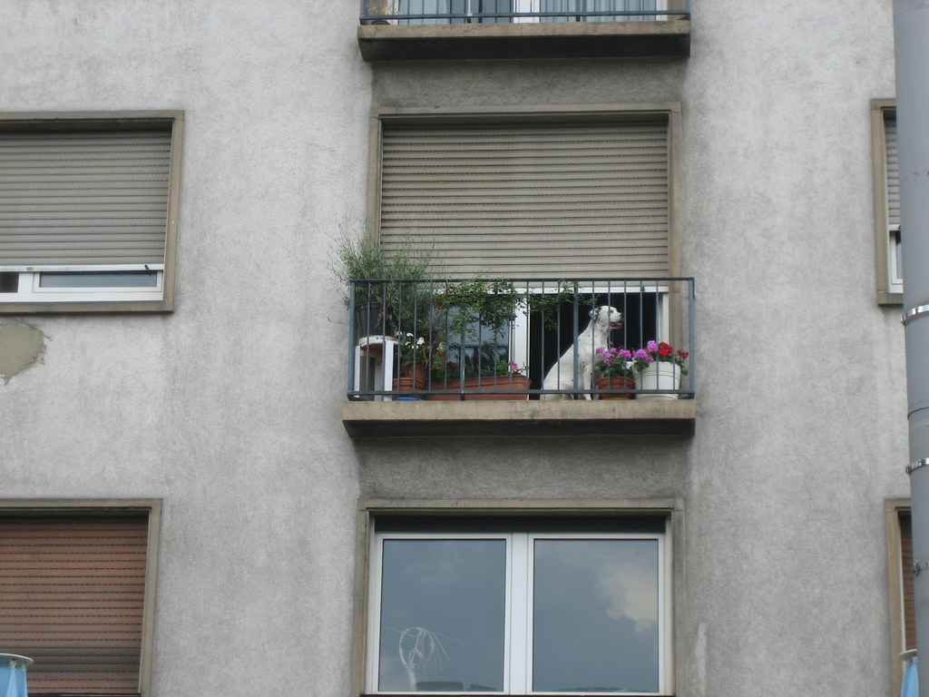 city west ludwigshafen