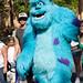 Disneyland August 2009 040
