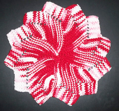 Windmill Dishcloth - DRU Exchange