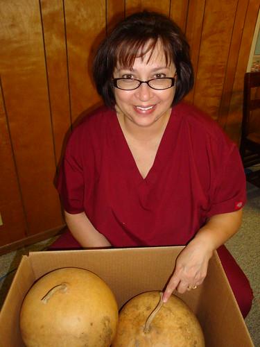 New Gourd Shipment