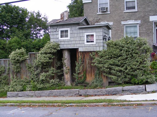 A Stump House