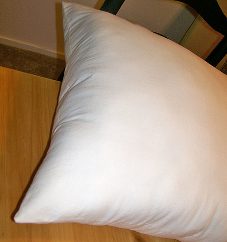 pillow form 21