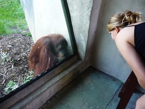 Columbus Zoo 158