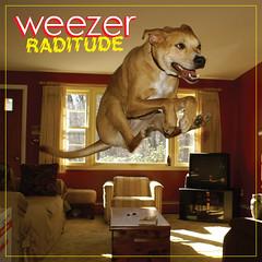 Sidney the Weezer dog