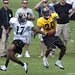 3416 Pittsburgh Steelers wide receiver Mike Wallace