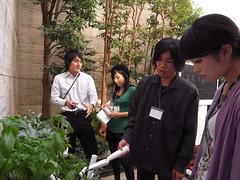 R0011910 (atsushi.nishio) Tags: crest kmd keio yakumo