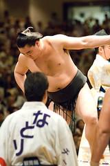 日馬富士 画像56