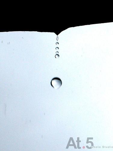 就等這一滴DSC09344.jpg