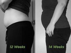 12-14 Week Comparison