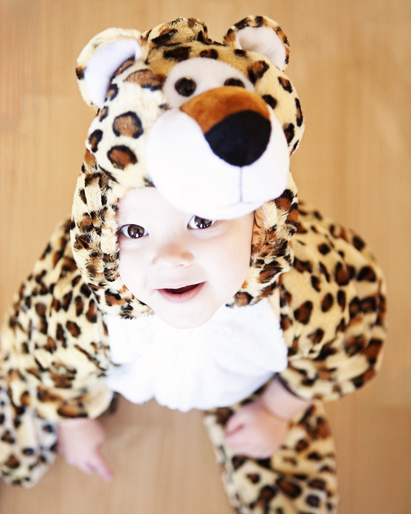 my little leopard