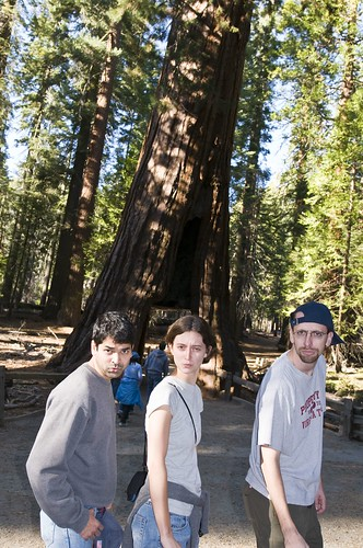 Blue Steel Sequoia Style