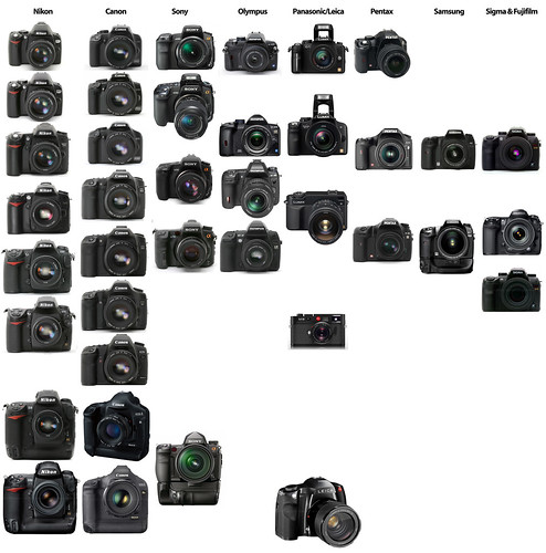 State of the DSLR market: Nikon vs. Canon vs. Sony/Minolta vs. Olympus vs. Panasonic/Leica vs. Pentax vs. Samsung vs. Sigma vs. Fujifilm digital SLR cameras, as of January 2009