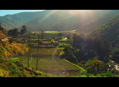 Lugares. (Eru!!) Tags: en de la venezuela que un vida solo lugares una pro tomas lugar historia vez maravilla especiales haras tabay erune descamarao