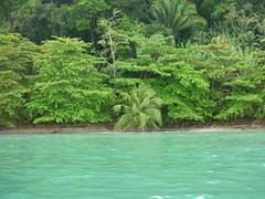 Punta Sal, Caribe hondureño (Cristina Bruseghini de Di Maggio) Tags: honduras soe caribe natureselegantshots puntasala
