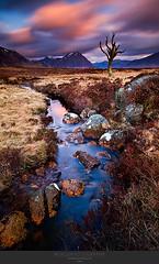 The Skeleton. (lucagiustozzi.com) Tags: scotland colorphotoaward glencoeglencoe