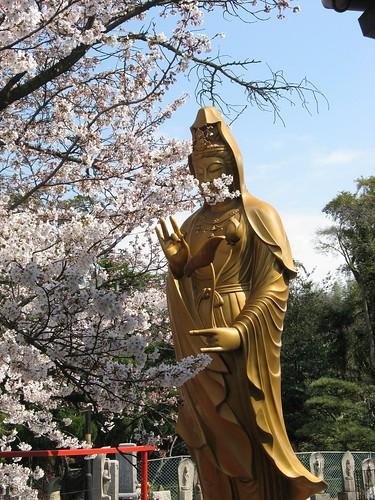 Day13 - 02 - 天皇寺 (Temple 79)