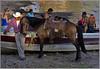 """Today on my Birthday I post: """"family time"""" (uteart) Tags: horse mexico cowboy explore swimmers today mybirthday ajijic vaquero chapala familytime lagodechapala utehagen uteart explore042309"""