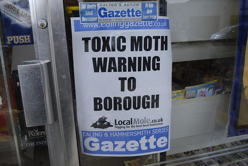 Toxic moths!