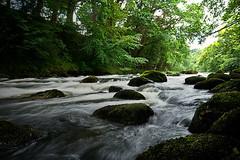 Llugwy river on a slow shutter speed (mrschnips) Tags: park trees summer green water speed river rocks slow national shutter flowing snowdonia llugwy