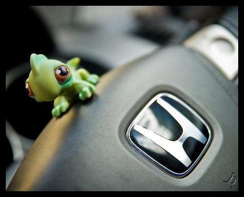 Norbert @ Steering Wheel