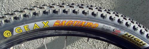 Geax Saguaro Sidewall