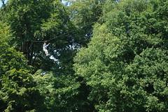 IMGP3404 (strongwater) Tags: dave jan bo velbert klettern witte klimmen svenja ilka luza strongwater waldkletterpark