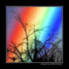 Rainbow tree (Heaven`s Gate (John)) Tags: color colour tree art silhouette rainbow dramatic vivid imagination multicolor multicolour rainbowtree 10faves johndalkin heavensgatejohn