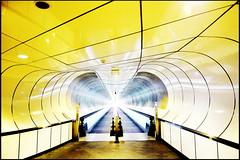 Tunnel vision (Maerten Prins) Tags: light reflection lines yellow subway rotterdam metro empty curves tunnel m deserted wilhelminaplein