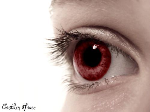 The Eye of a Vampire