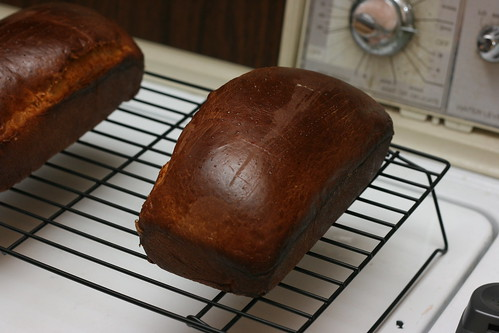 Portuguese Sweet Bread Loaves